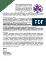 Que es Nanotecnología.docx