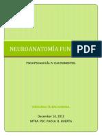 Neuroanaromia Paola