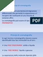 Principi Cromatografia