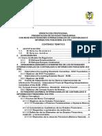 NIIF Orientacion Profesional Presentacion Estados Financieros CTCP