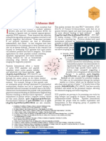 RGD Peptides Product Brochure