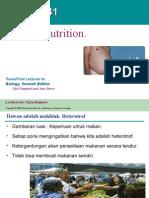 translasi presentasi sistem pencernaan