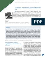 Embryo Implantation - The Molecular Mechanism