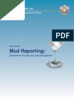 Mud Reporting