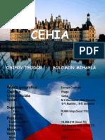 cehia 2007.pptx