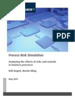 SAG-AEP D a-Process Risk Simulation