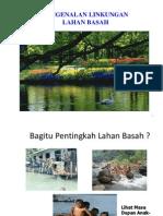 Ekosistem Lahan Basah