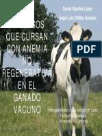 Anemia No Regenerativa en Vacuno (Editado)