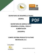 Plan Rector Platano 2012
