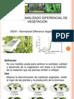 Presentacion NDVI