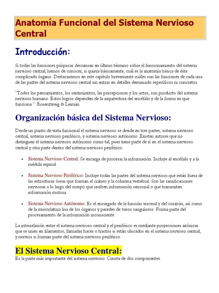 Anatomía Funcional del Sistema Nervioso Central