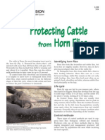 Protecting Cattle From Horn Flies