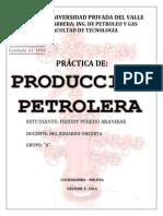 Practica1 Produccion i