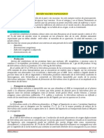Pediatrìa I - Clase 6