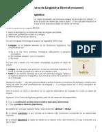 Ling.gral -Saussure Resumen