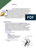 Common Biomechanuical Deficiencies