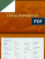 CEFALOs07