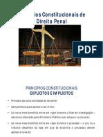 Modulo 1 - Principios Constitucionais de Direito Penal (1)