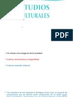 Estudios Culturales 015