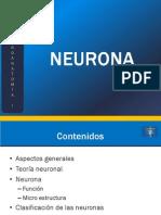 02_Neurona