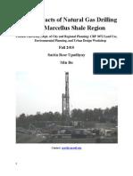 CHEVRON-Visual Impact_Final Report