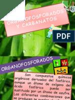 Carbanatos y Organofosforados