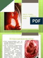 micromatro-121011162437-phpapp02
