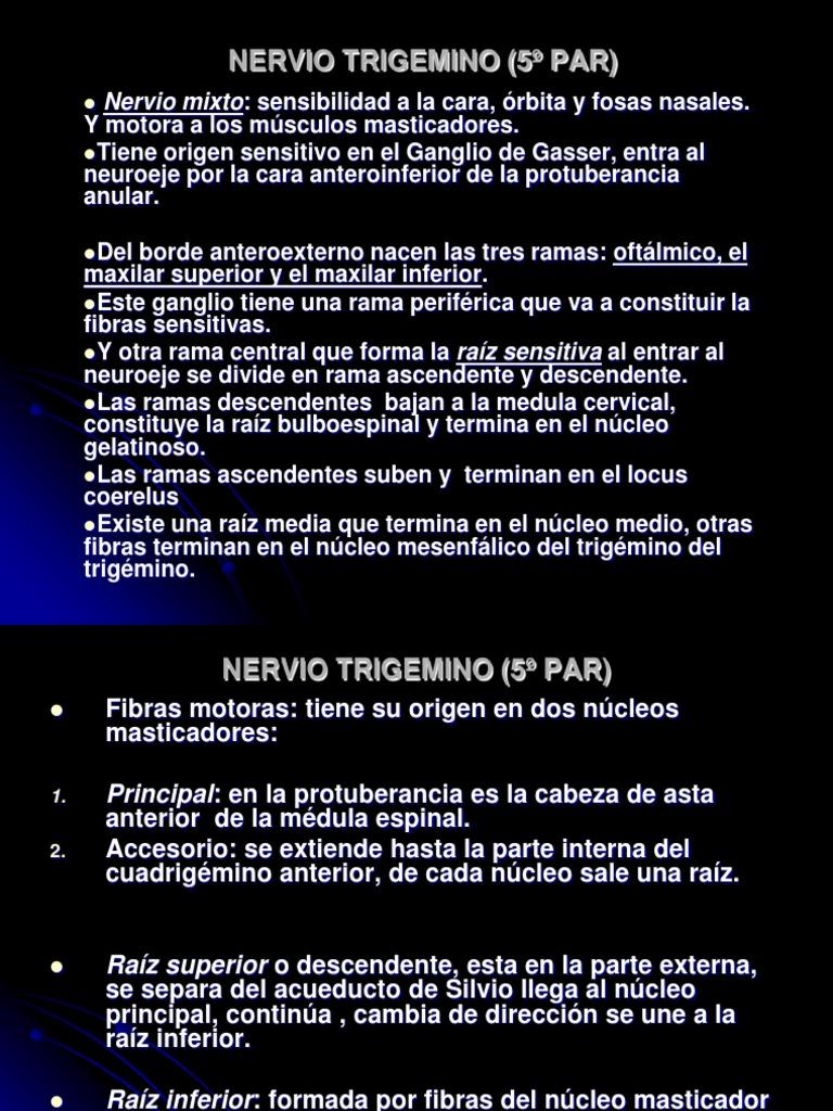 NERVIO TRIGEMINO (5º PAR)