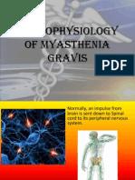 Pathophysiology of Myasthenia Gravis