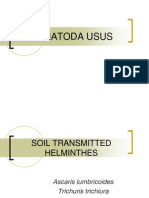 5.Soil Transmitted Helminthes