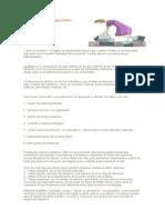 El síndrome de la fatiga crónica.doc