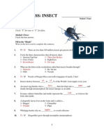 Eyewitness Insect Worksheet Key