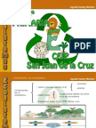 ecosistemas-101119042237-phpapp02