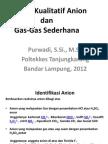 2 Analisis Anion & Gas