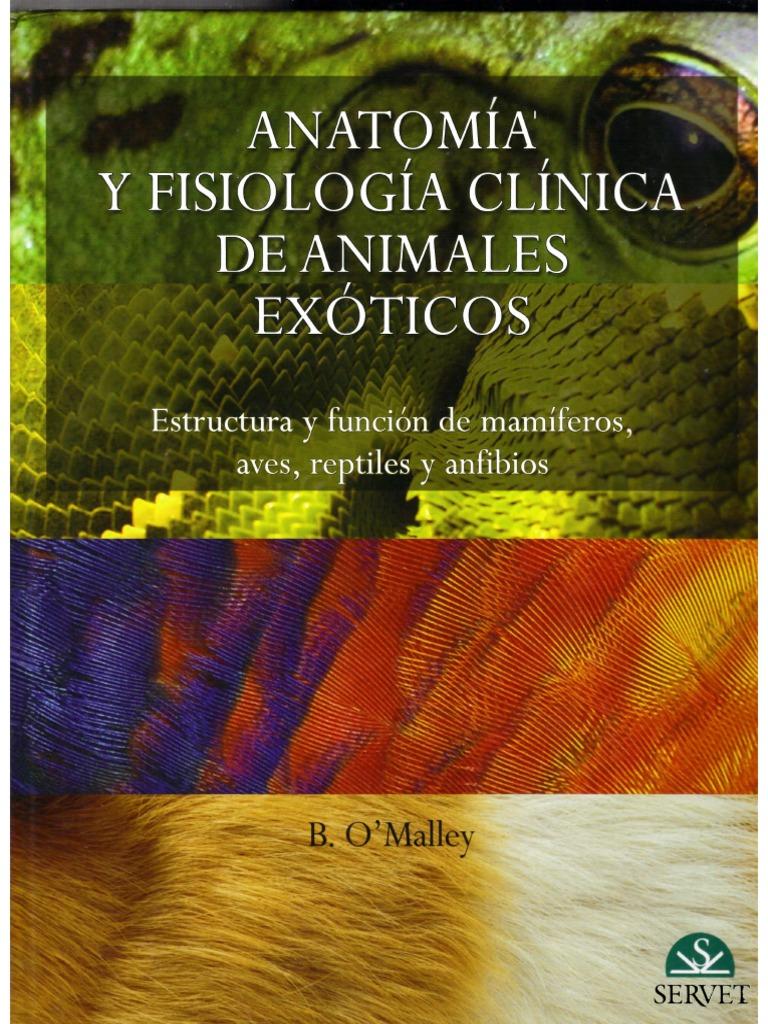 Anatomia y Fisiologia Clinica de Animales Exoticos
