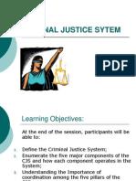 63959130 Criminal Justice Sytem