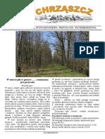 Chrząszcz - Marzec 2014 (nr 96)