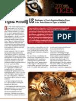 TigersAmongUS Web