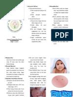 Leaflet BAYI