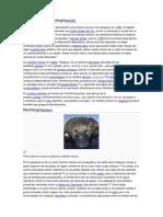 Taxonomía y etimología
