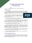 4flora Bacteriana Intestinal