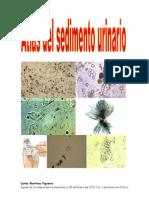 atlasdesedimentourinariopdf-140201193531-phpapp01