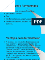 IV Productos Fermentados