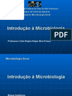 Aula Introducao Microbiologia