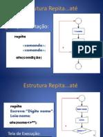 Estruturas de Repeticao.ppsx