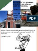 FIEBRES ICTERO-HEMORRAGICAS