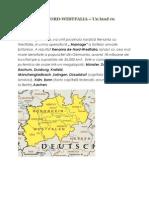 RENANIA DE NORD.docx