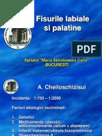 Cheiloschizis, Palatoschizis, Hemangioame, Limfangioame, Fistule