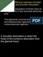 The Shoulder Joint