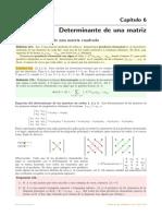 06_Determinante